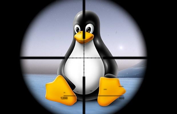 Раскрыт функционал Linux-бэкдора FakeFile