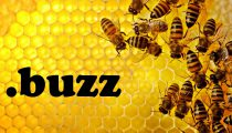Регистатура .buzz собирается продать свой домен на аукционе