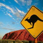 Вымогательское ПО Kangaroo требует выкуп и блокирует доступ в Windows