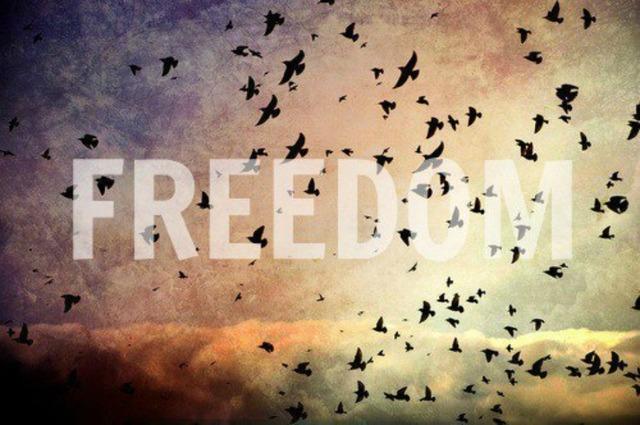 Сколько стоит «свобода»?