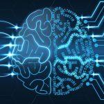 Штучний інтелект запропонували зрівняти в правах з тваринами